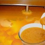 alphonso-mango-pulp2